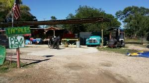 Roadside Tamales